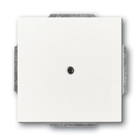 busch jaeger zentralscheibe 1749 84 nr 2cka001710a3163. Black Bedroom Furniture Sets. Home Design Ideas